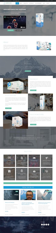 Creative Sanctum - Auxilium Consulting Solutions